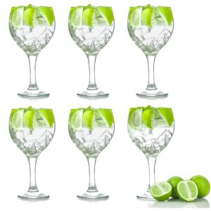 gin and tonic cocktail glasses